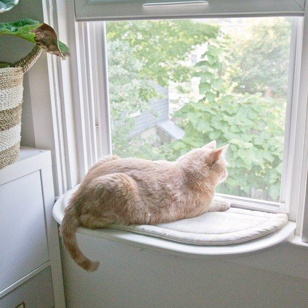 Custom DIY cat perch via Year of Serendipity