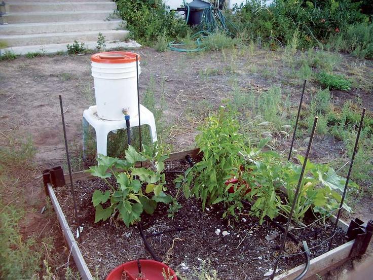 Grey Water For Gardening Shapeyourminds Com
