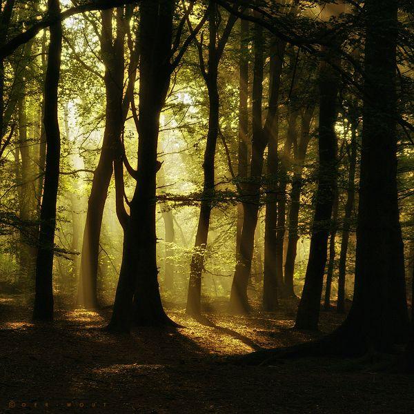 Muhteşem doğa fotoğrafları - http://www.turkyurdu.com/muhtesem-doga-fotograflari/