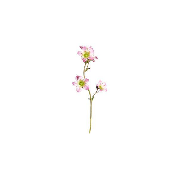 Best 25 Flower Desktop Wallpaper Ideas On Pinterest: Best 25+ Minimalist Wallpaper Ideas On Pinterest