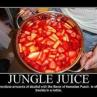 "Jungle Juice is one of the best and ultimate party drinks. There are many different versions, but this is the recipe for ""real"" jungle juice. Many others simply contain just vodka and a bunch of different juices - basically a giant cocktail. Here is the recipe for Jungle Juice that will truly have you acting like a wild animal."