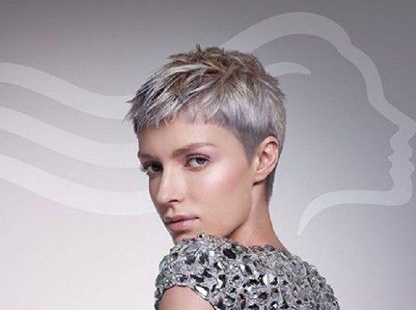Sehr Kurzer Haarschnitt Fur Frauen Mit Grauen Haaren Frisuren