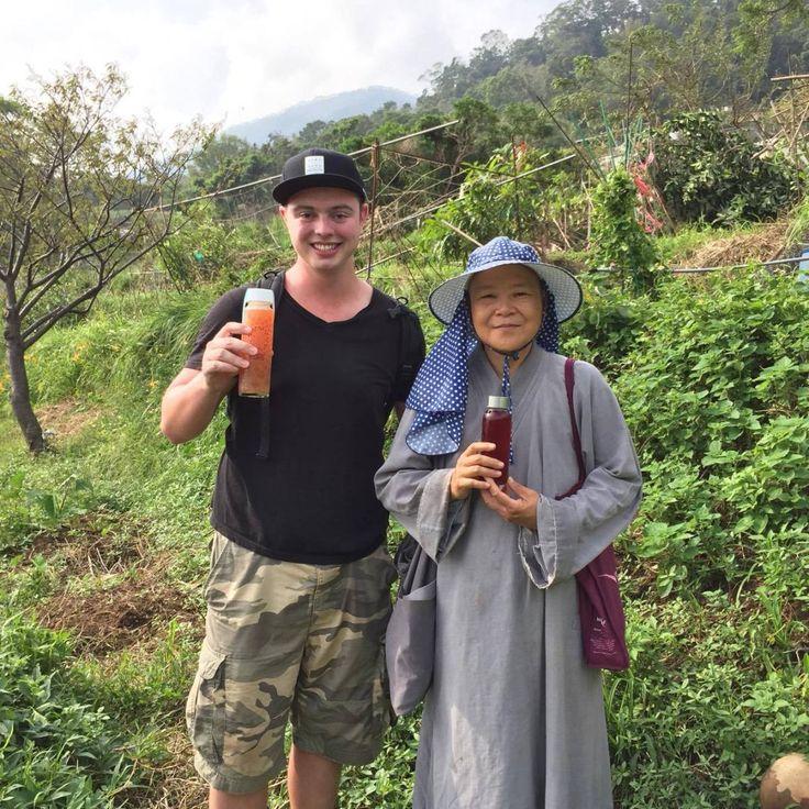 Visiting a Natural Farm in Taiwan and Sourcing Tea for Kombucha #kombucha #RAW #organic #vegan #tea #probiotics #yum #healthy #health #probiotic #yoga