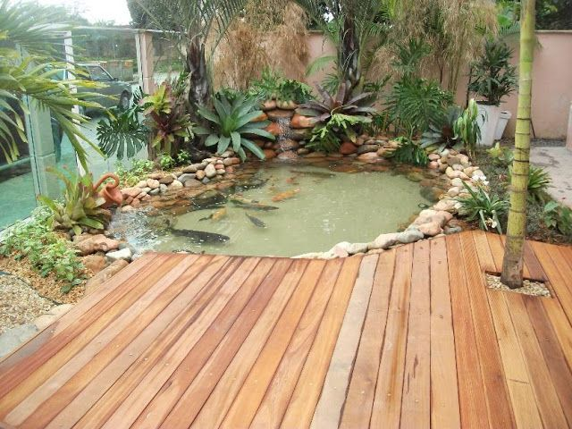 2967 Best Natural Swimming Pools Ponds And Water Stuff