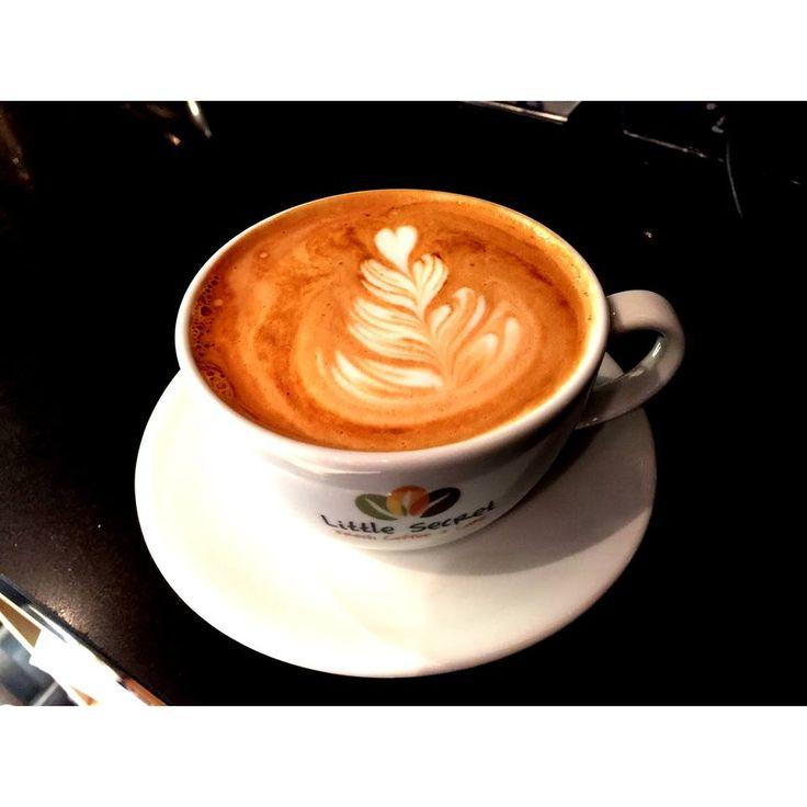 Rosetta/ latte tulip