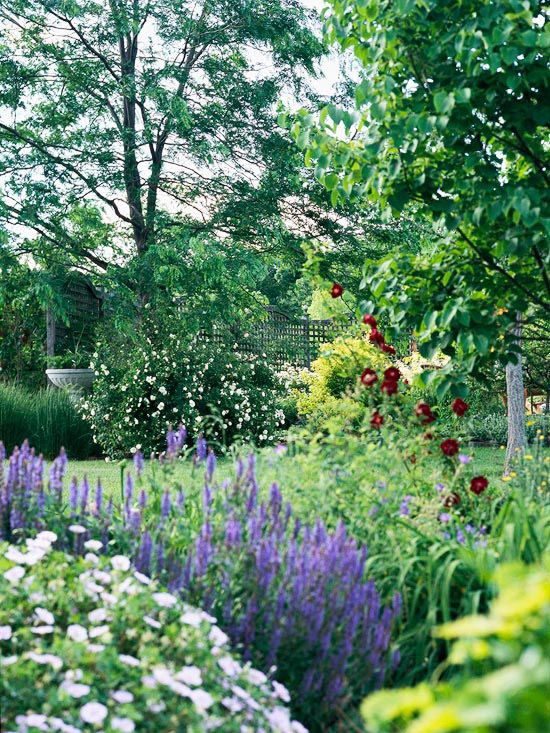 Get 20 Flower Borders Ideas On Pinterest Without Signing