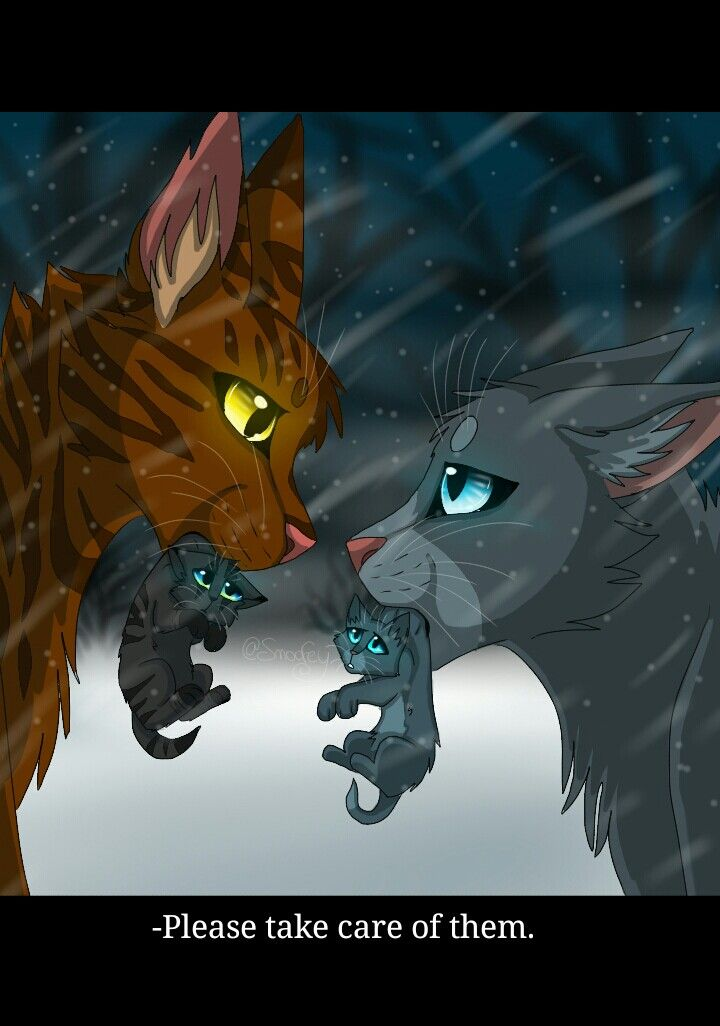 bluestar gives her son and daughter to oakheart warriors