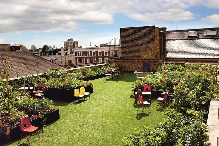 Roof top garden. This has literally been my dream since 5th grade.
