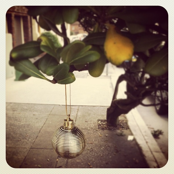 #bondi #beach christmas bauble