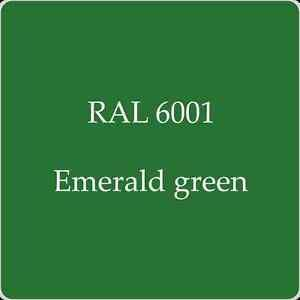 Image result for RAL 6001