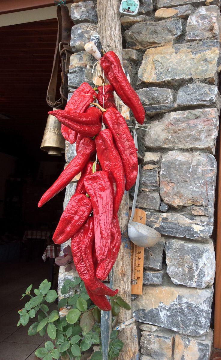 Κοκκινες πιπεριες στις πρεσπες