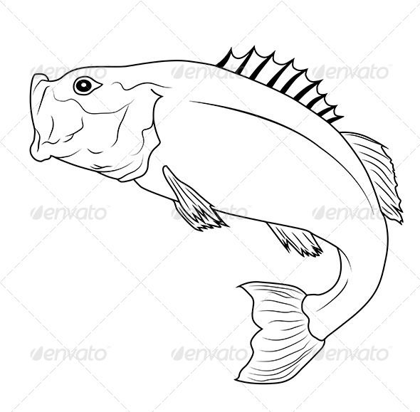 Jumping Fish GraphicRiver Bass Outline Illustration Created 19November13 GraphicsFilesIncluded JPGImage