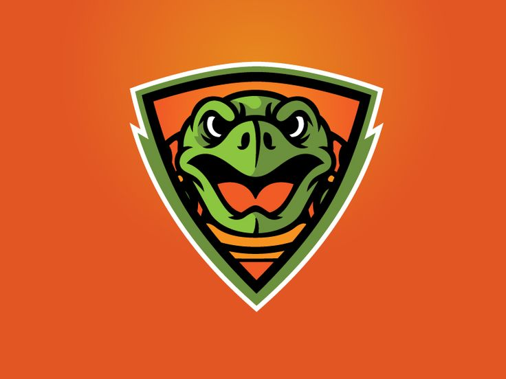 Turtle Shield Logo by Ben Newton