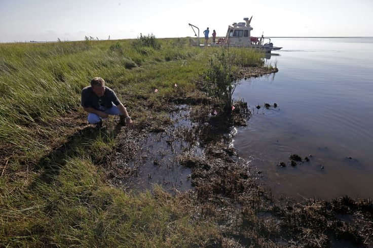 Four Years After The Deepwater Horizon Oil Spill, The Gulf Is Still Suffering
