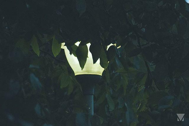Hidden ___ #photography #photo #light #nikon #nikond3300 #nikontop #autohash #people #outdoors #wear #pole #travel #traveling #visiting #instatravel #instago #environment #exploration #daylight #painting #light #nature #leaf