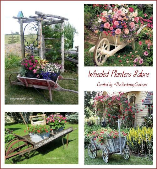 Collection of wheeled planters - I love garden vignettes like this