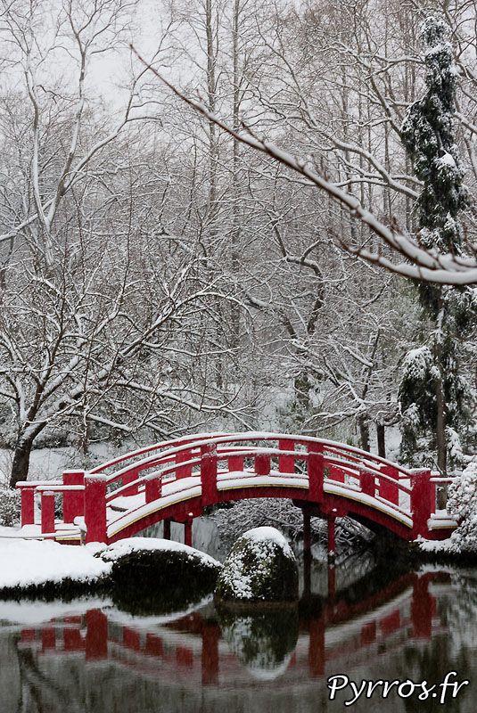Les Couleurs du Jardin Japonais sur Fond Blanc - Photo de Pyrros