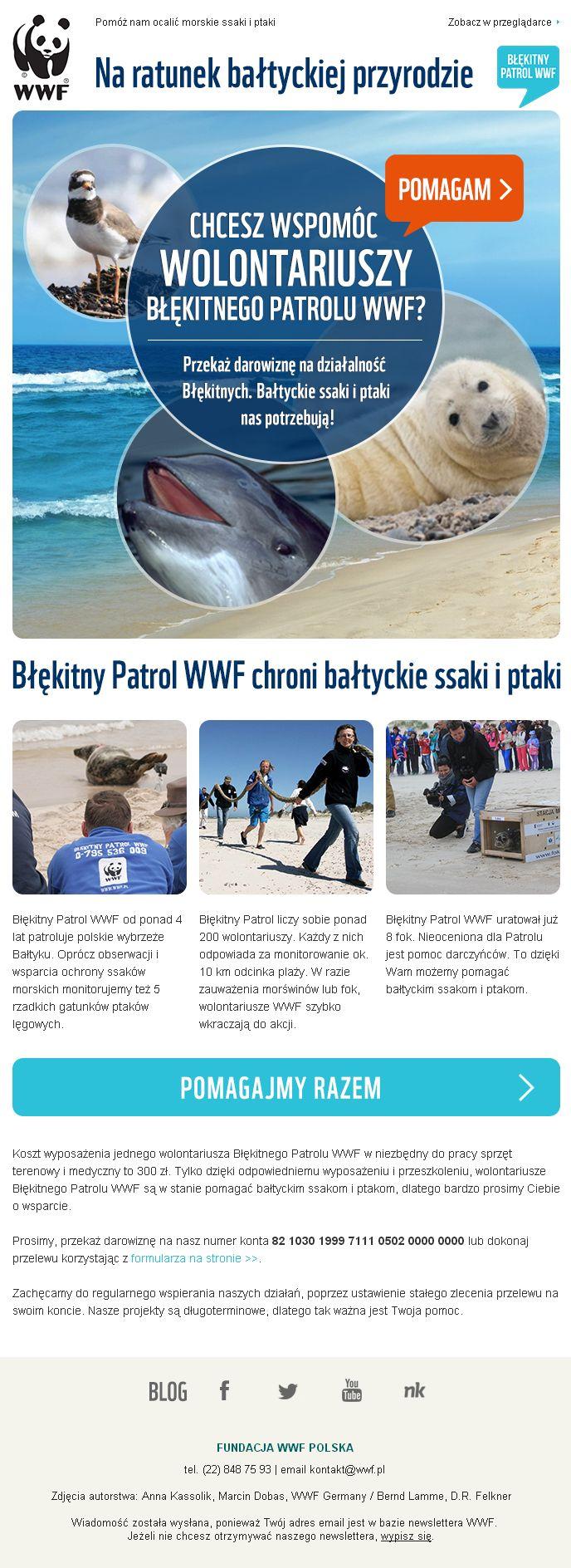 Kampania promująca Błękitny Patrol ratujący nadbałtycką przyrodę / https://panel.sendingo.pl/kampania/79y / #wwf #animals #email #emailmarketing #newsletter