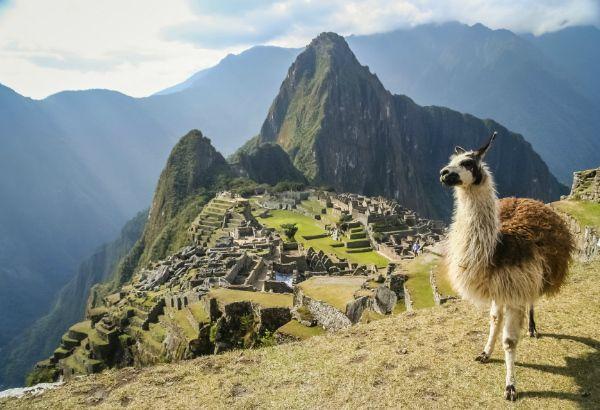 Travel Immunizations South America → Get These Shots!
