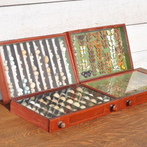 Moths In Kitchen Cabinets: 17 Best Miniature Boxes Collectibles Images On Pinterest
