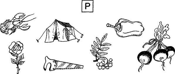 Соедини с буквой Р только те предметы, названия которых начинаются со звуков Р или Рь.