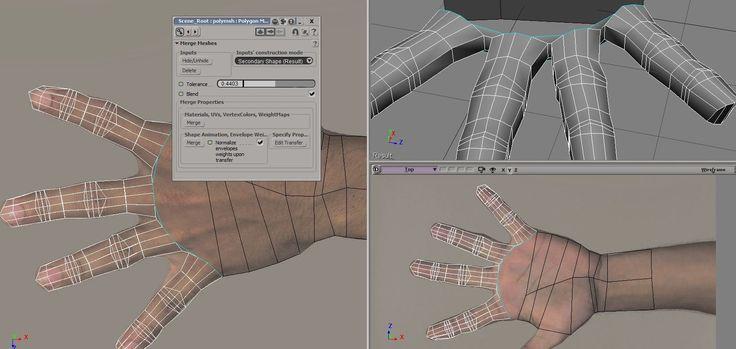 human hand topology 1-3