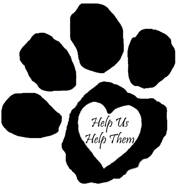 Please know that there are many ways to help.....just ask us.....thank you Calling All Cats Rescues
