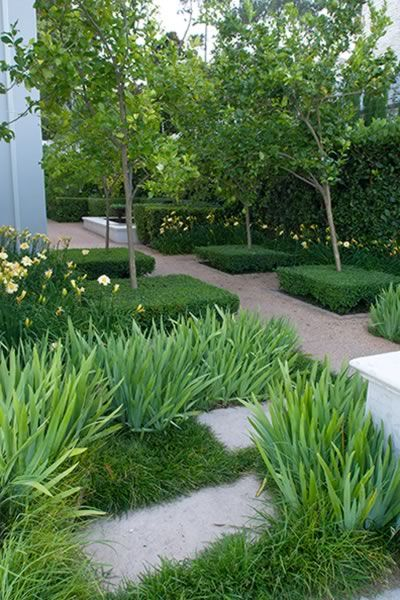Franchesca Watson | Garden Designer  [ LOVE THE TEXTURAL PLAY BETWEEN THE MONDO GRASS + THE BLOOD LILLIES OR DWARF IRIS]