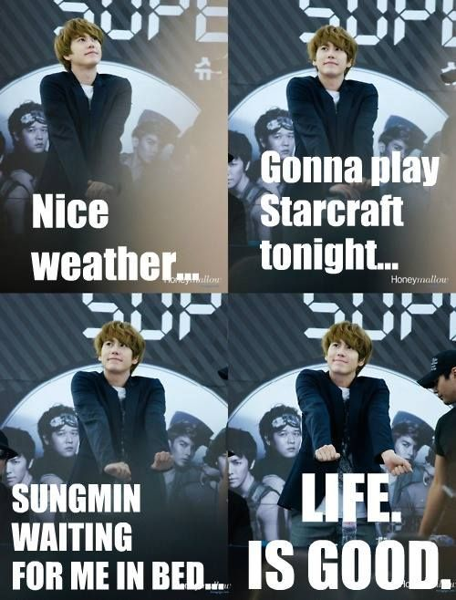 kyuhyun and ryeowook relationship memes