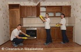 Domestic Cleaning Wealdstone