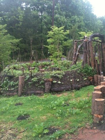 nice keyhole hugelkultur bed. I also like the use of log cuttings along the path.