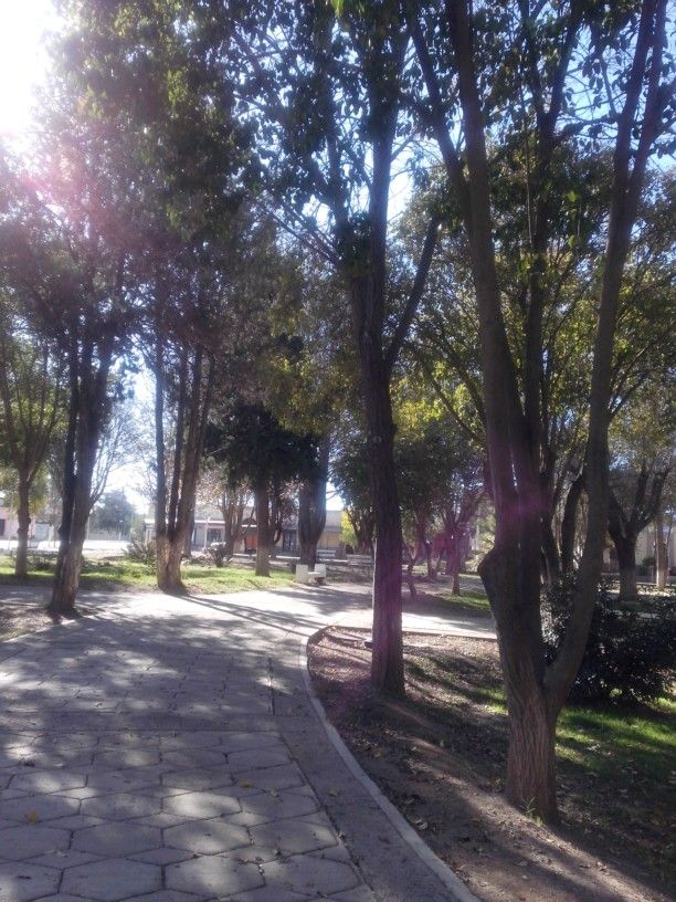 Plaza de Famatina.