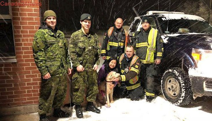 Canadian Armed Forces and New Brunswick firefighters team up to find lost dog