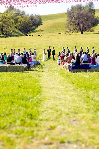 1000+ Ideas About Field Wedding On Pinterest