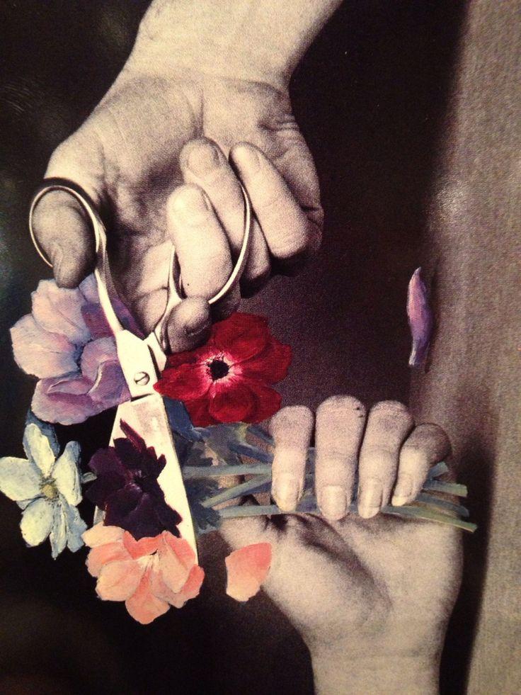 """Duane Michals """"cut flowers"""" 1984"""