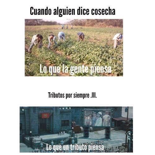 Memes THG - Cosecha - Wattpad