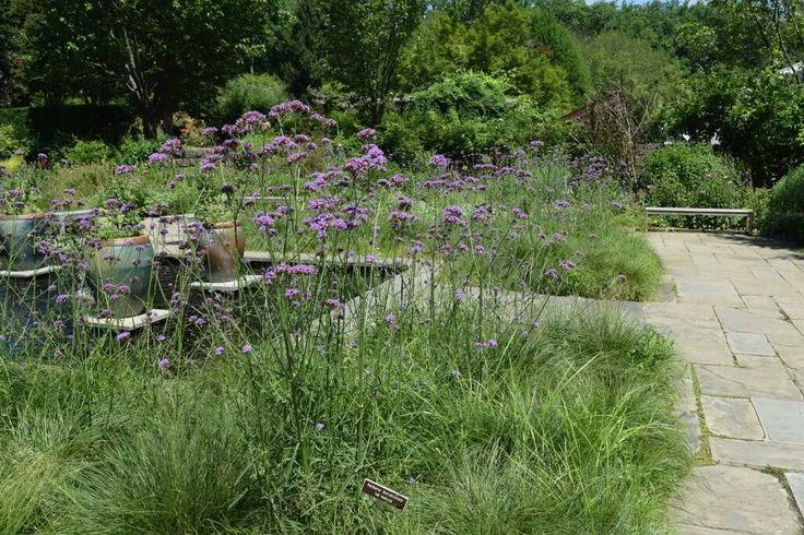 Brookside Gardens, Silver Spring, Maryland.