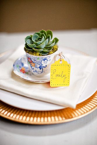 So sweet! Succulents in a tea cup. ...how pretty and brilliant: placecards