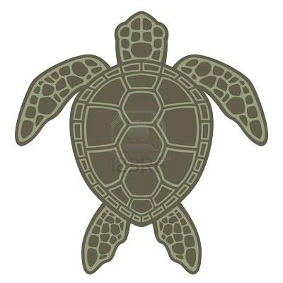 Good Sea Turtle Image...for invites?