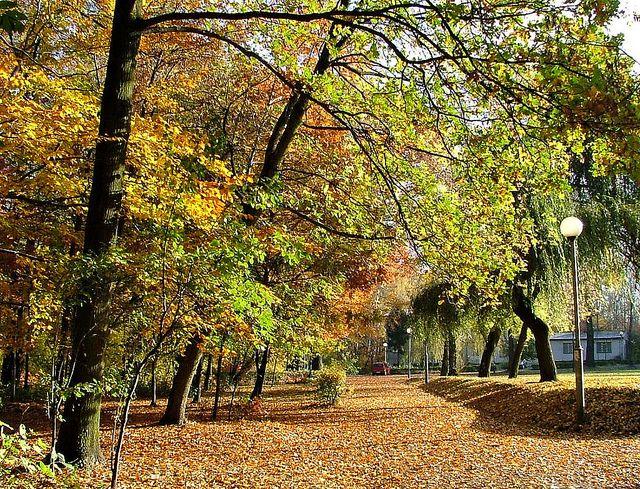 Upper Silesia Poland   Katowice - Murcki, Upper Silesia, Poland   Flickr - Photo Sharing!