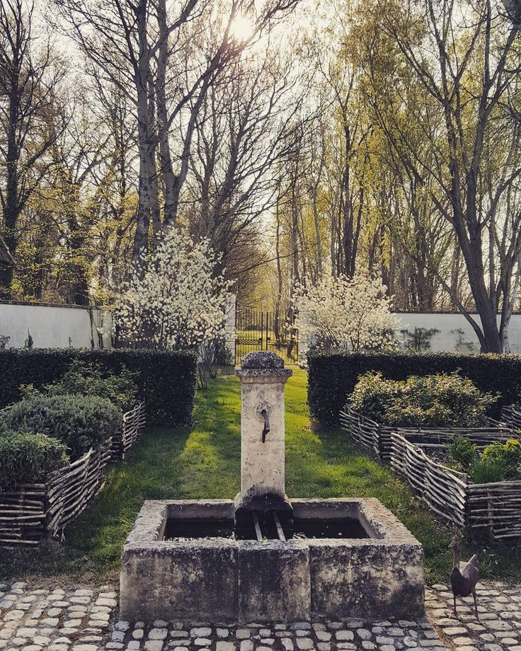 #jardin #garden #fontain #fontaine #eau #water #canard #duck #jardiniere #soleil #sun #arbre #arbres #tree #blanc #white #flore #lumiere #light #barriere #portail #portal #barrier