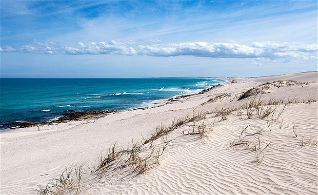 """""""Despite the attraction of the whales, De Hoop's popularity doesn't centre around whale season; the summer months of December and January are actually the busiest time of year. Not surprising given that the 88,957-acre (36,000 hectare) reserve, known by South Africans as the """"Jewel of the Western Cape"""", is part of a World Heritage Site renowned for its rich biodiversity and plethora of rare animal and plant species, some found nowhere else on Earth."""""""