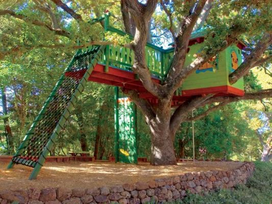 Tree houses treehouse and trees on pinterest for Treeless treehouse