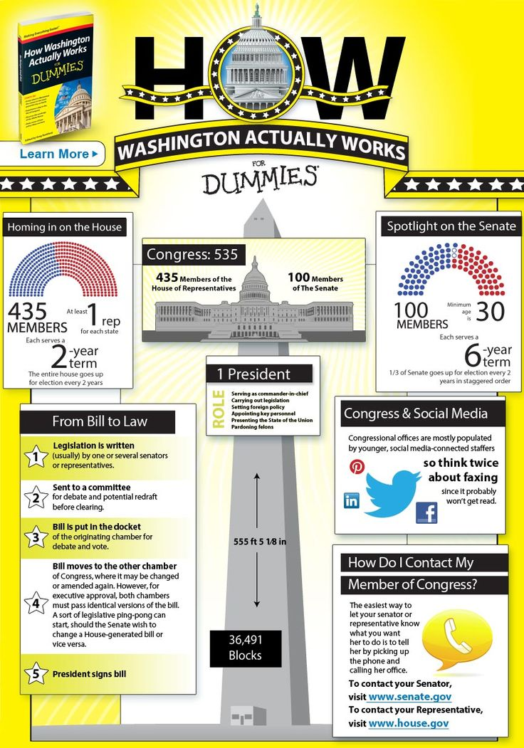 How Washington Actually Works Infographic - For Dummies