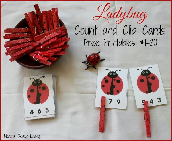 Ladybug Math For Preschoolers Free Printables Count Clip Bug ActivitiesSpring