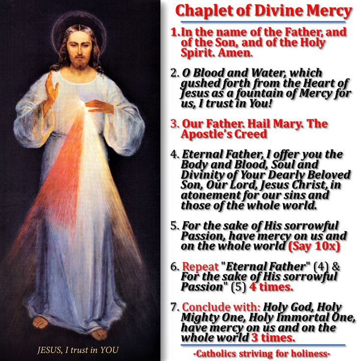 HOW TO PRAY THE DIVINE MERCY CHAPLET INFOGRAPHIC. As a preparation for the forthcoming Divine Mercy Sunday, I'm sharing to you an infographic, in case you might want to recite it :D You might…