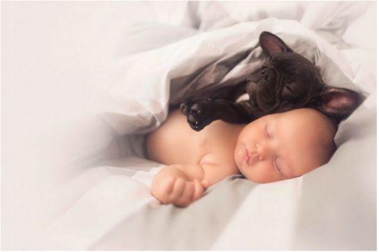 Bonita amistad entre este bebé y su Bulldog Francés nacido el mismo día que él