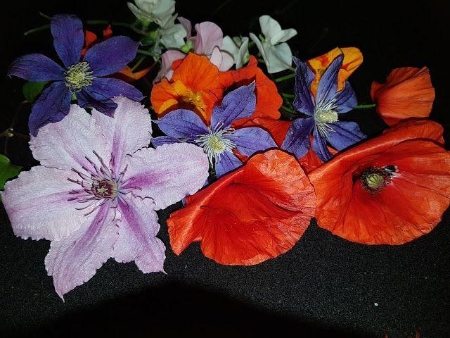Takalo-Roppolan puutarha- ja mansikkatila: VIERAS TULOSSA - KAHVIKATTAUKSEN SUUNNITTELUA
