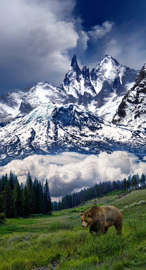 Mountains know the secrets we need to learn. That it might take time, It might be hard, but if you just hold on long enough you will find the strength to rise up. ~ Tyler Knott Gregson