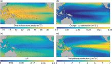 Future marine ecosystem drivers, biodiversity, and fisheries maximum catch potential in Pacific Island countries and territories under climate change